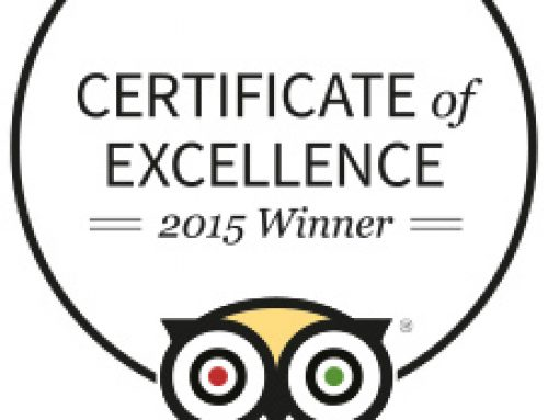 MASALA BAY AWARDED 2015 TRIPADVISOR CERTIFICATE OF EXCELLENCE